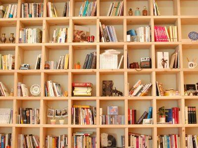 Jak wybrać półkę na książki?