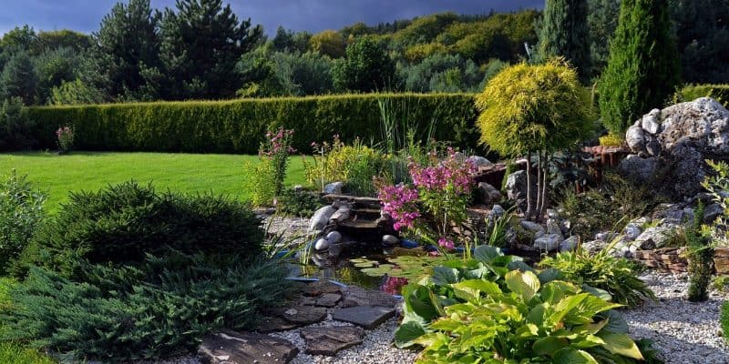 Jak samodzielnie stworzyć skalniak w ogrodzie?
