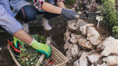 Kamienie w ogrodzie - jak je wykorzystać?