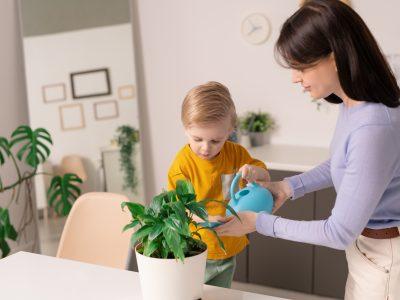 Jak nauczyć dziecko dbać o kwiaty w swoim pokoju?
