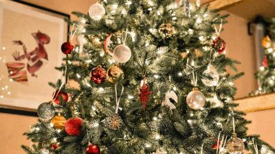 Świąteczne dekoracje wnętrz polskich celebrytów - sprawdź!