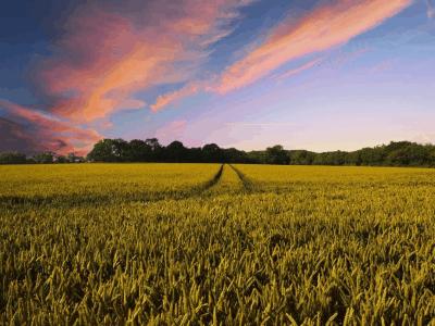 Zmiany w przepisach dotyczących nabywania działek rolnych!