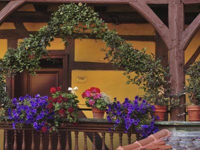 Przygotowujemy balkon na wiosnę! Jakie rośliny i dekoracje wybrać?
