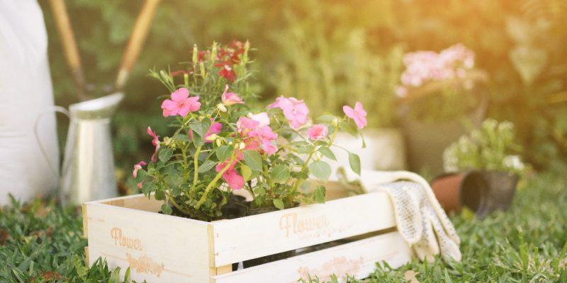 Jak ozdobić ogród na Wielkanoc?