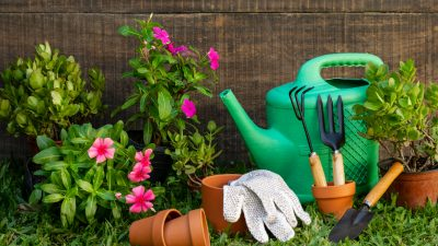 Plan prac w ogrodzie na cały rok – miesiąc po miesiącu